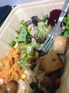 half eaten salad (forgot to take the picture before) mashed sweet potatoes, tofu, lettuce, beats, edamame/corn salad, mushrooms, quinoa, broccoli
